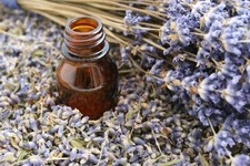 Lavender Oil Small